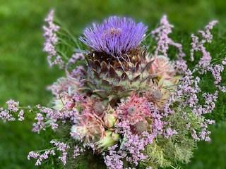 Blütenkunst - Distel von Gartenglück & Blütenkunst Pörnbach bei München - Boho Hochzeit Blumen -> Bild von http://hochzeit-boho.de/